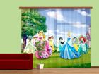 Fotokardin Disney Princess 280x245 cm ED-87037