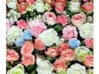 Fotokardin Roses, 280x245 cm ED-87042