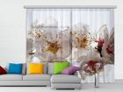 Fotokardin Flowers, 280x245 cm ED-87044