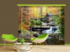 Fotokardin Watermill in autumn, 280x245 cm ED-87052