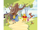 Fotokardin Winnie the Pooh and Friends