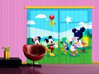 Fotokardin Disney Mickey and Friends, 180x160 cm ED-87100