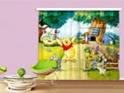 Fotokardin Disney Winnie the Pooh 180x160 cm ED-87101