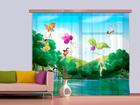 Fotokardin Disney Fairies with rainbow