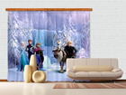 Poolpimendav fotokardin Disney Ice Kingdom