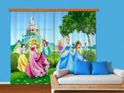 Poolpimendav fotokardin Disney Princess 280x245 cm ED-87346
