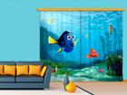 Poolpimendav fotokardin Disney Nemo