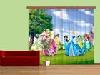 Poolpimendav fotokardin Disney Princess