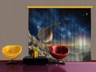 Poolpimendav fotokardin Saturn 280x245 cm ED-87370