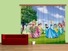 Pimendav fotokardin Disney Princess 280x245 cm ED-87491