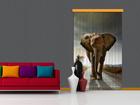 Pimendav fotokardin Elephant I, 140x245 cm ED-87861