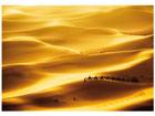 Fototapeet Golden dunes 400x280 cm ED-88116