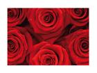 Fototapeet Sea of roses 400x280 cm ED-88129