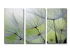 Kolmeosaline seinapilt Lilled 160x90 cm ED-88882