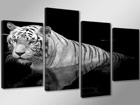 Neljaosaline seinapilt Valge tiiger 130x80 cm ED-88916