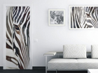 Fliis-fototapeet Zebra 90x202 cm ED-91077