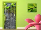 Fliis-fototapeet Green wall 90x202 cm ED-91461
