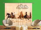 Poolpimendav fotokardin Herd of horses 280x245 cm ED-95347