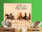 Pimendav fotokardin Herd of horses 280x245 cm ED-95876