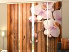 Läbipaistev paneelkardin Dry Bamboo 240x240 cm ED-97521
