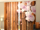 Poolpimendav paneelkardin Dry Bamboo 240x240 cm ED-97522