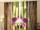 Läbipaistev paneelkardin Four Shoots of Bamboo 240x240 cm ED-97524