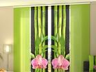 Pimendav paneelkardin Orchids and Bamboo 3, 240x240 cm ED-97532