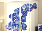 Pimendav paneelkardin Blue Orchids 240x240 cm ED-97572