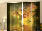 Läbipaistev paneelkardin Nephrite Orchids 240x240 cm ED-97575