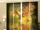 Pimendav paneelkardin Nephrite Orchids 240x240 cm ED-97577