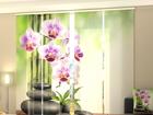 Läbipaistev paneelkardin Orchids and Stones 240x240 cm ED-97588