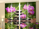 Läbipaistev paneelkardin Orchids in the Garden 240x240 cm ED-97591