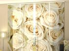 Läbipaistev paneelkardin Champagne Roses 240x240 cm ED-97627