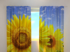 Poolpimendav kardin Flowers of the Sun 240x220 cm ED-97957