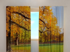 Pimendav kardin Golden autumn 240x220 cm ED-98055