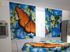 Läbipaistev kardin Butterfly on the blue 200x120 cm ED-98321