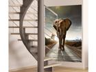 Fliis-fototapeet Elephant 180x202 cm ED-99099