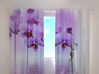 Poolpimendav kardin Lilac beauty 240x220 cm ED-99347