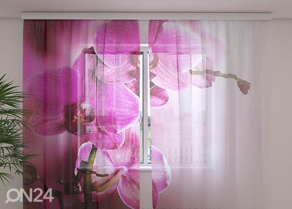Šifoon-fotokardin Purple orchids 240x220 cm ED-100003