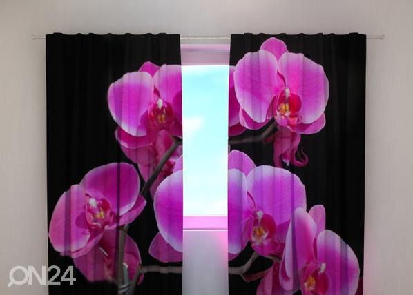 Läbipaistev kardin Orchid twig 240x220 cm ED-100453
