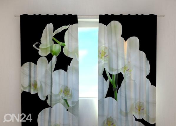 Pimendav kardin Yin Yang orchid 240x220 cm ED-100476