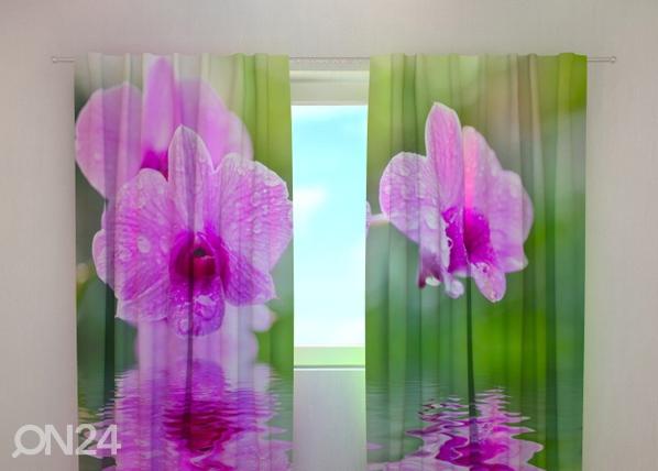 Läbipaistev kardin Three orchids 240x220 cm ED-100486