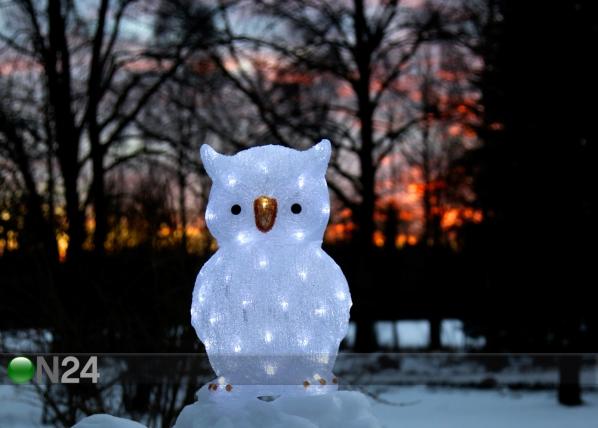 Akrüülist kuju Owl 43 cm AA-101102