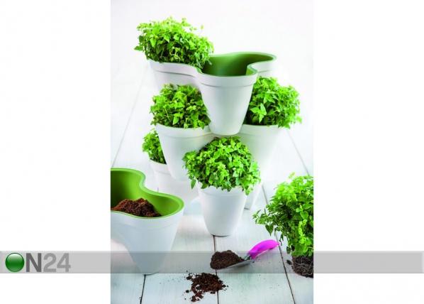 Istutuspott Keter Ivy Planter TE-109003