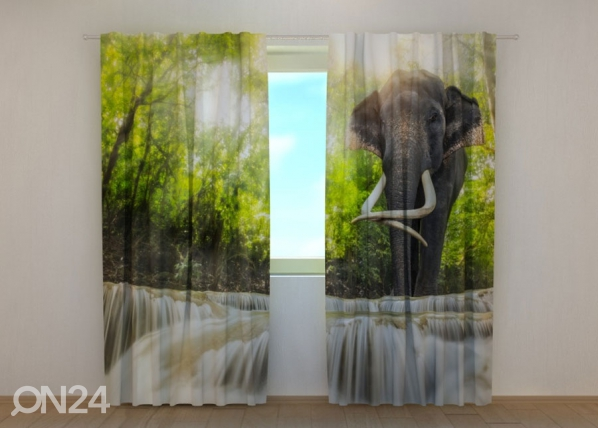 Pimendav kardin Big Elephant 240x220 cm ED-134187