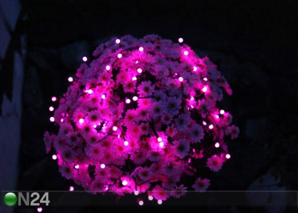 Värvilised LED tuled Party 80 AA-38911