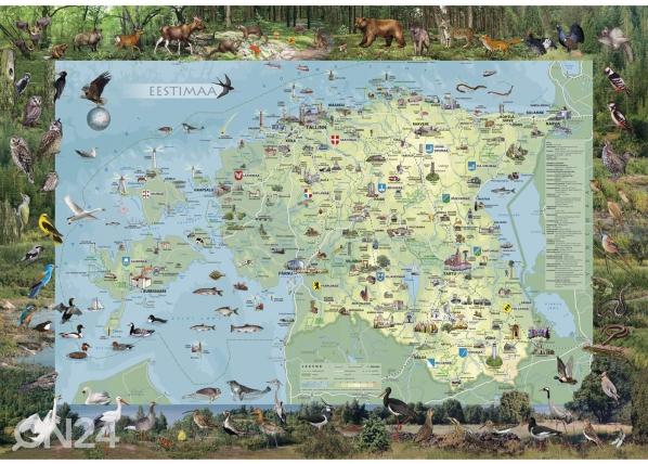 Regio Eestimaa piltkaart riputusliistudega 99x69cm RW-57750