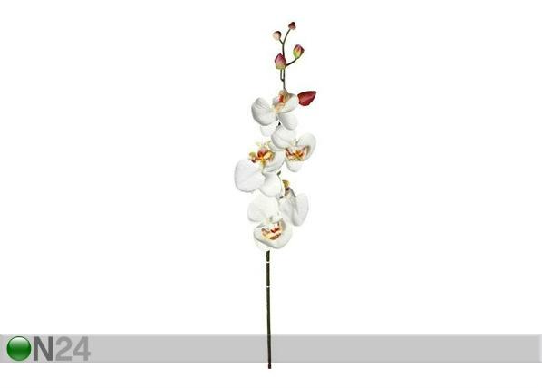 Kunstlill Orhidee kreem SG-63516