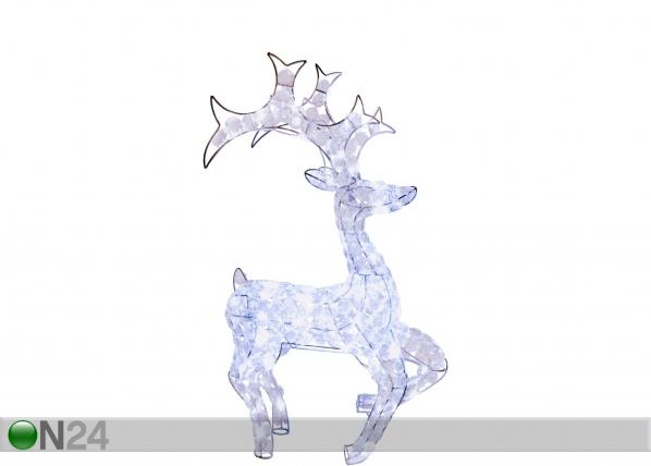Jõulukaunistus õue Reindeer 80cm AA-68681