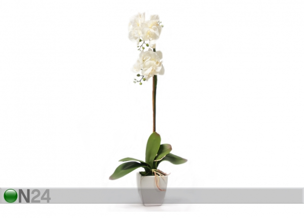 Kunstlill Valge orhidee 75 cm EV-69034